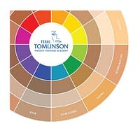 Flesh Tone Color Wheel